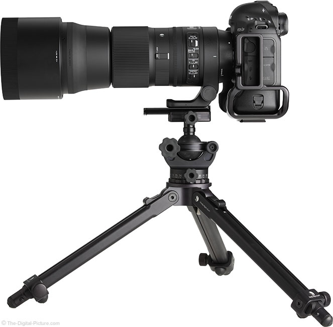 Sigma 150-600mm OS Contemporary Lens Side View on Tripod