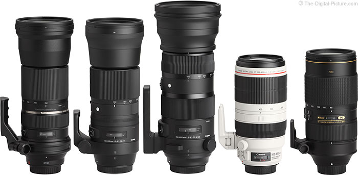 Sigma 150-600mm Lens Comparison