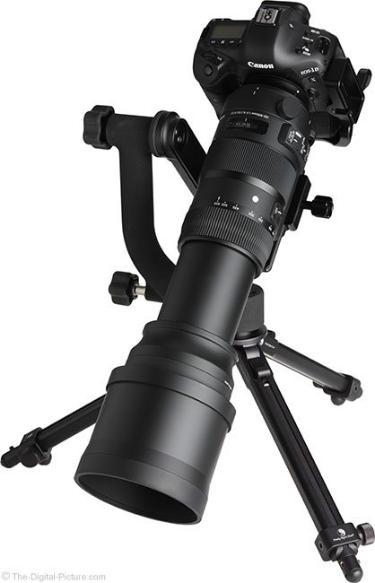 Sigma 150-600mm OS Sports Lens Angle View with Hood