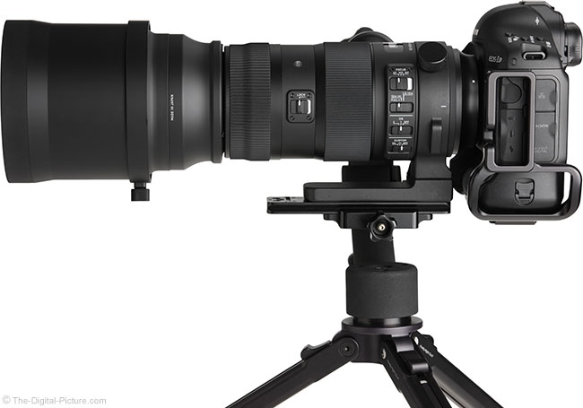 Sigma 150-600mm OS Sports Lens Side View with Hood