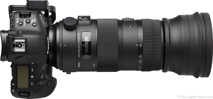 Sigma 150-600mm OS Sports Lens Top View