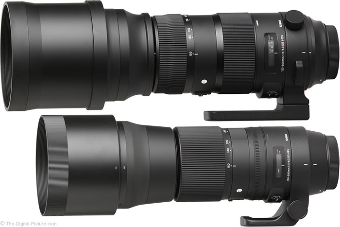 Sigma 150-600mm Sports Lens Compared to the Sigma 150-600mm Contemporary Lens