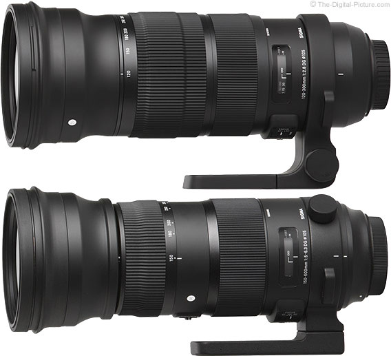 Sigma 150-600mm and 120-300mm OS Sports Lens Comparison