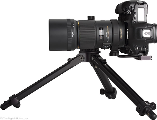 Sigma 150mm f/2.8 EX DG OS HSM Macro Lens on Tripod