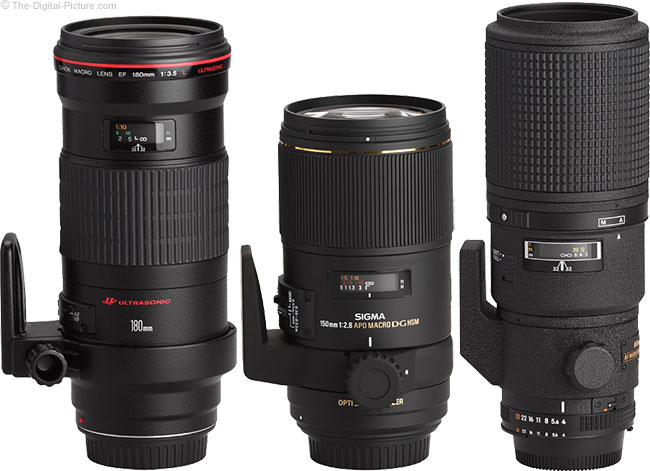 Sigma 150mm f/2.8 EX DG OS HSM Macro Lens Compared to Canon and Nikon Lenses