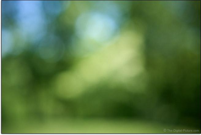 Sigma 35mm f/1.4 DG DN Art Lens Maximum Blur Example