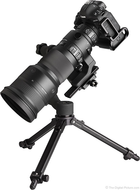 Sigma 500mm f/4 DG OS HSM Sports Lens Angle View