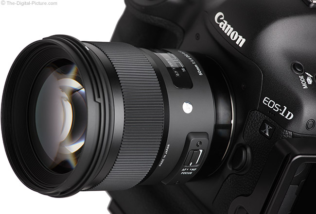 Sigma 50mm f/1.4 DG HSM Art Lens on Canon EOS-1D X – Close Up