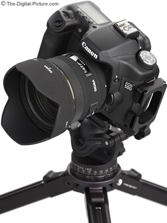 Sigma 50mm f/1.4 EX DG HSM Lens mounted on a Canon EOS 50D