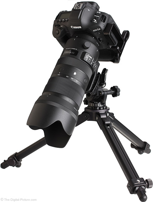 Sigma 70-200mm f/2.8 DG OS HSM Sports Lens Angle View with Hood