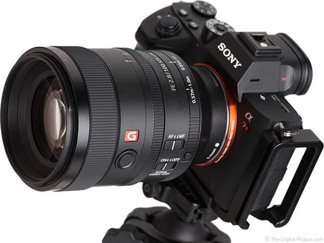 Sony FE 100mm f/2.8 STF GM OSS Lens Angle View