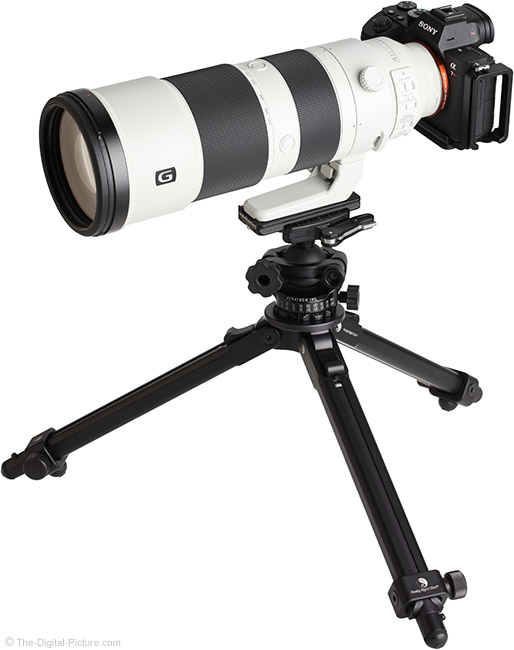 Sony FE 200-600mm f/5.6-6.3 G OSS Lens Angle View