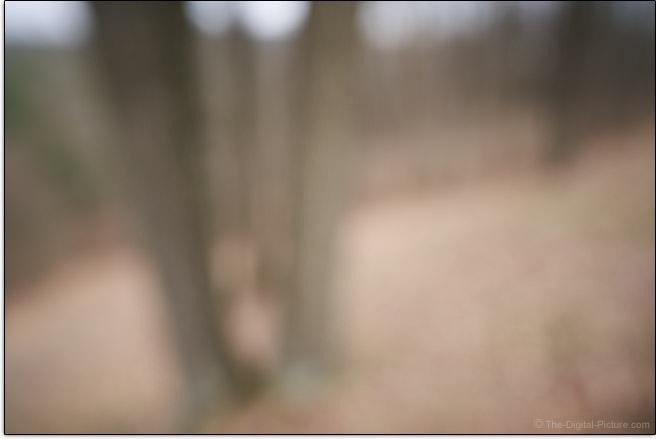 Sony FE 20mm f/1.8 G Lens Maximum Blur Example