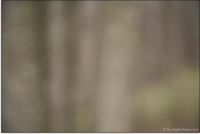 Sony FE 24-70mm f/4 ZA OSS Lens Maximum Blur Example