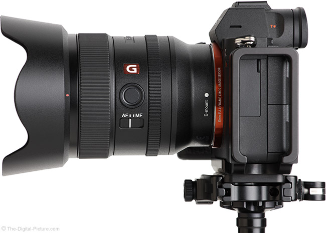 Sony FE 24mm f/1.4 GM Lens Side View with Hood