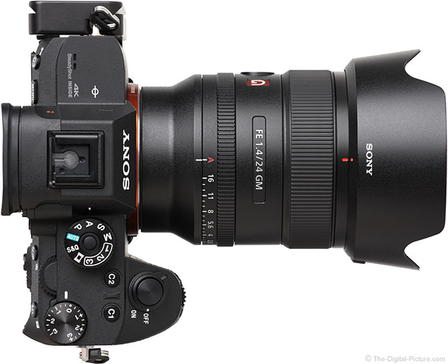 Sony FE 24mm f/1.4 GM Lens Top View with Hood