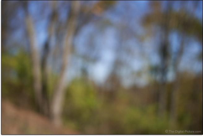 Sony FE 28-60mm f/4-5.6 Lens Maximum Blur Example