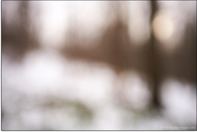 Sony FE 35mm f/1.8 Lens Maximum Blur Example