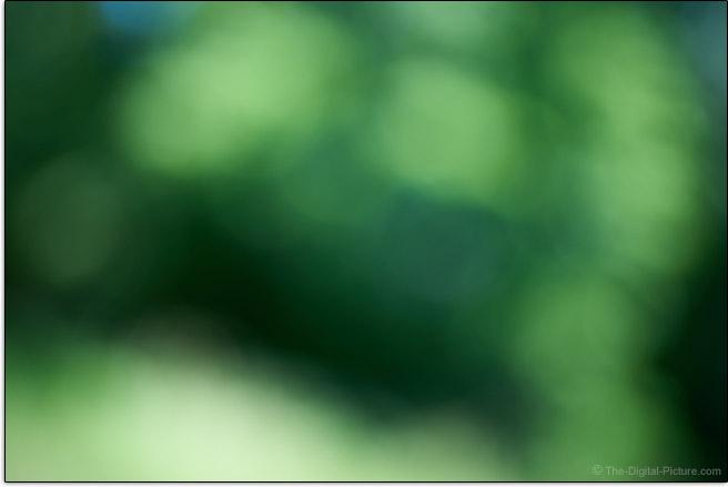 Sony FE 50mm f/1.2 GM Lens Maximum Blur Example