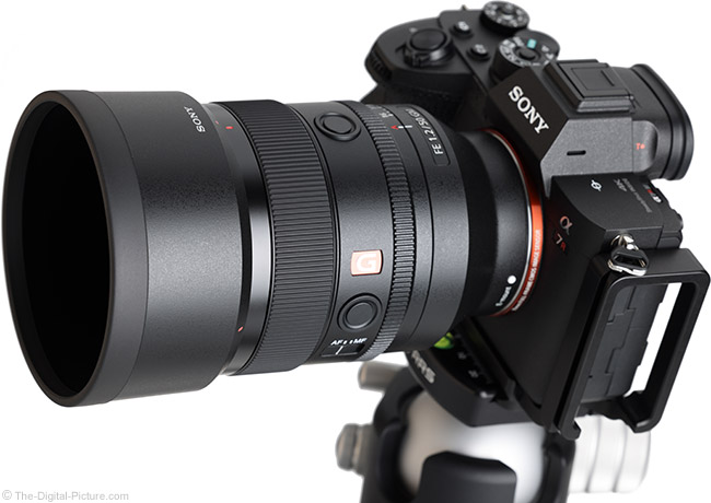 Sony FE 50mm f/1.2 GM Lens Angle View with Hood