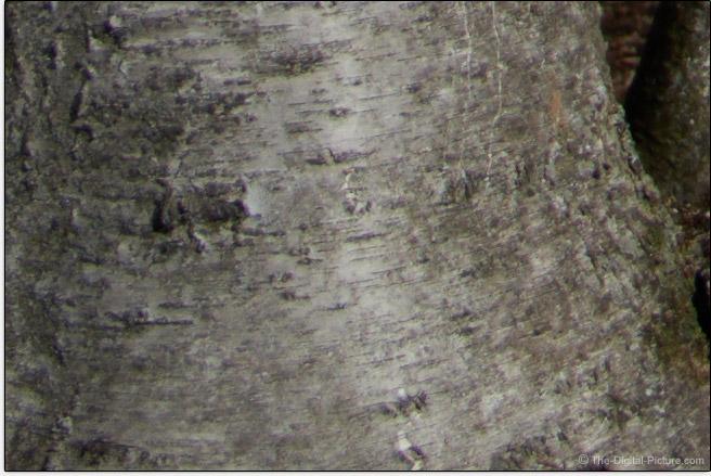 Sony FE 50mm f/1.4 ZA Lens Corner Sharpness Comparison Example