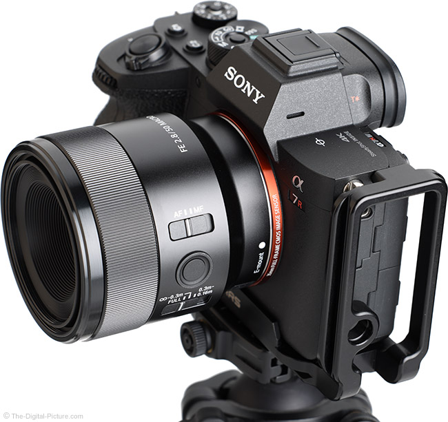 Sony FE 50mm f/2.8 Macro Lens Angle View