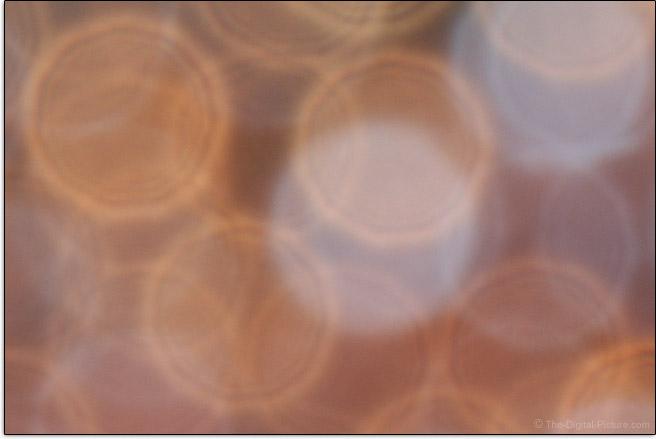 Sony FE 600mm f/4 GM OSS Lens Bokeh Example