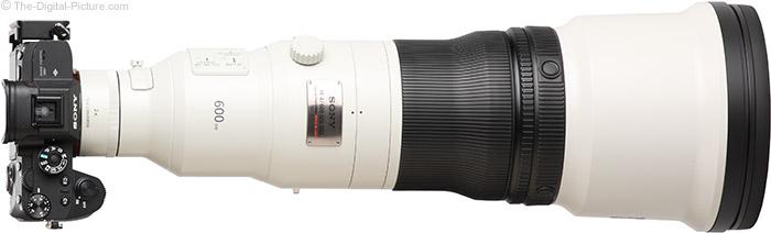 Sony FE 600mm f/4 GM OSS Lens with Teleconverter