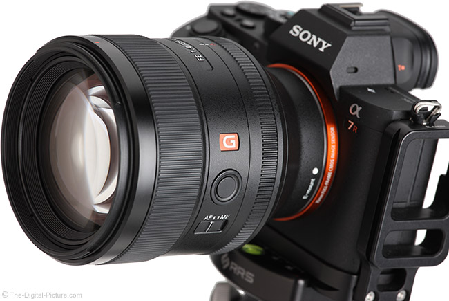 Sony FE 85mm f/1.4 GM Lens Angle View