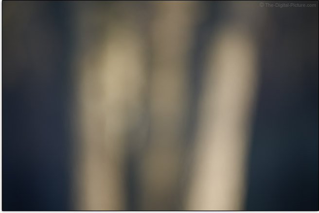 Sony FE 85mm f/1.8 Lens Maximum Blur Example
