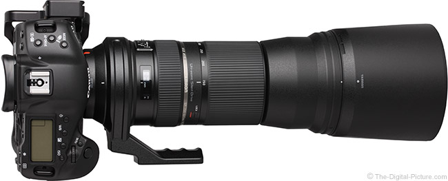 Tamron 150-600mm VC Lens with Hood on Camera