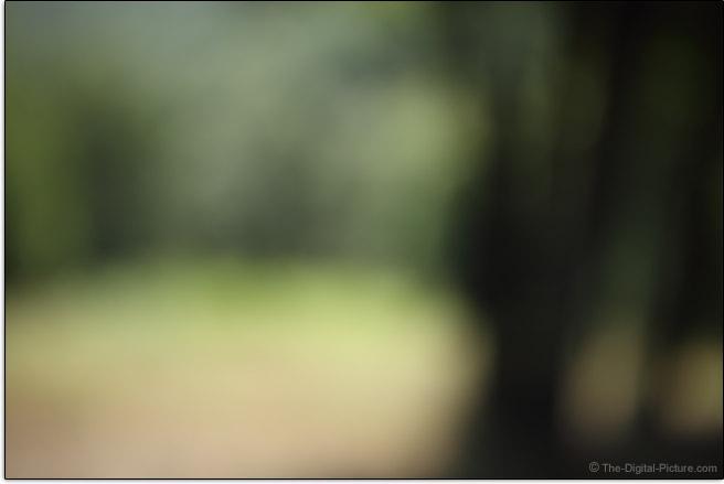 Tamron 35mm f/1.4 Di USD Lens Maximum Blur Example