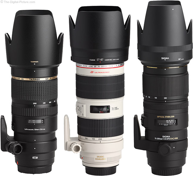 Canon, Tamron and Sigma 70-200mm Lenses with Hoods