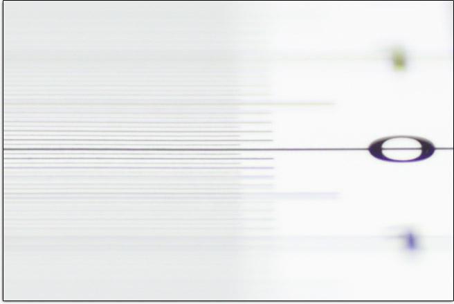 Tamron 85mm f/1.8 Di VC USD Lens Focus Shift Example
