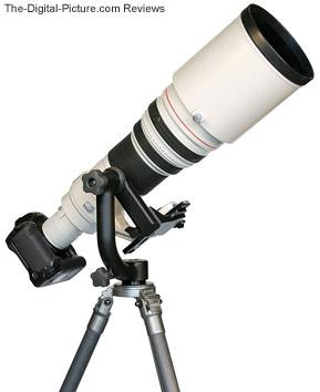 Wimberley Gimbal Tripod Head II in use with super telephoto lens