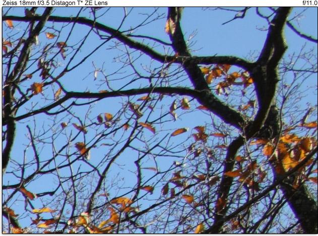 Zeiss 18mm f/3.5 Distagon T* ZE Lens Image Quality Comparison
