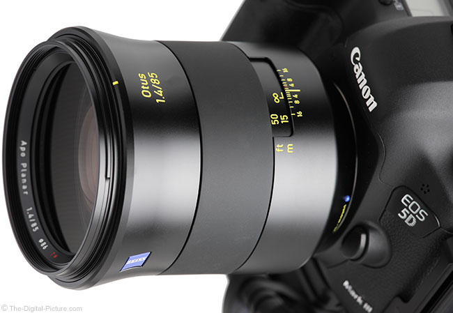 Zeiss Otus 85mm f/1.4 Lens on Canon EOS 5D Mark III Close-up