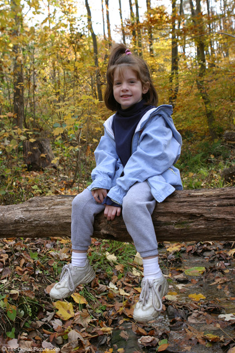 Girl Sitting on Log Picture