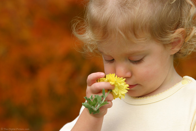 Smelling the Flowers Picture