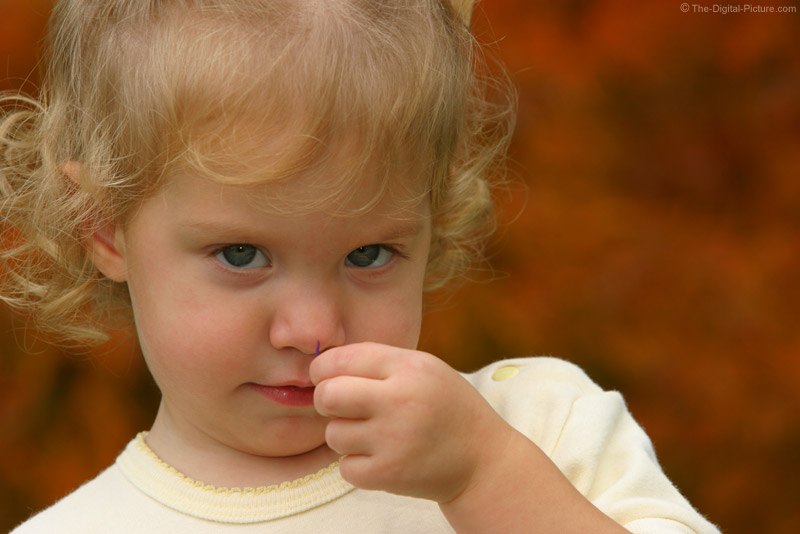 Little Girl Smelling a Flower Picture
