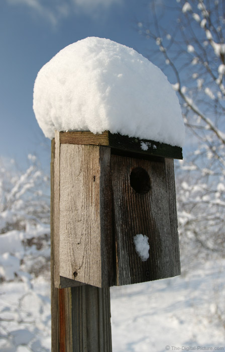 Bird House Picture
