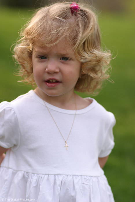 Little Girl in a White Dress Picture