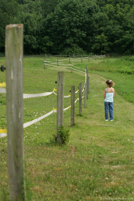 Girl by Pasture Picture