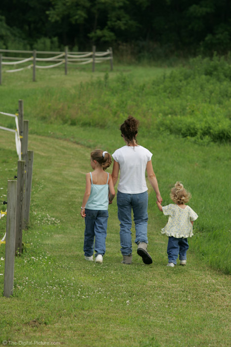 Mother and Daughters Walking Picture