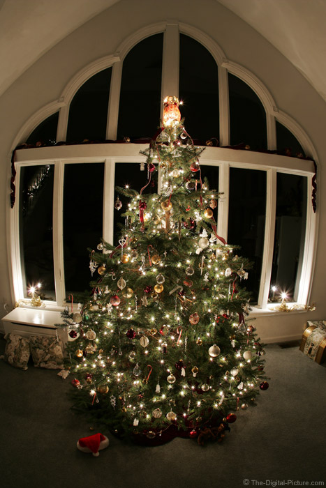 Christmas Tree Lights Picture