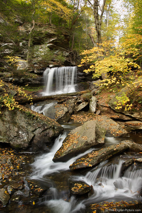 Ricketts Glen State Park Picture