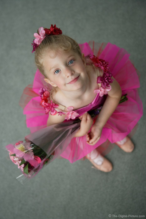 Ballerina with Flowers Picture