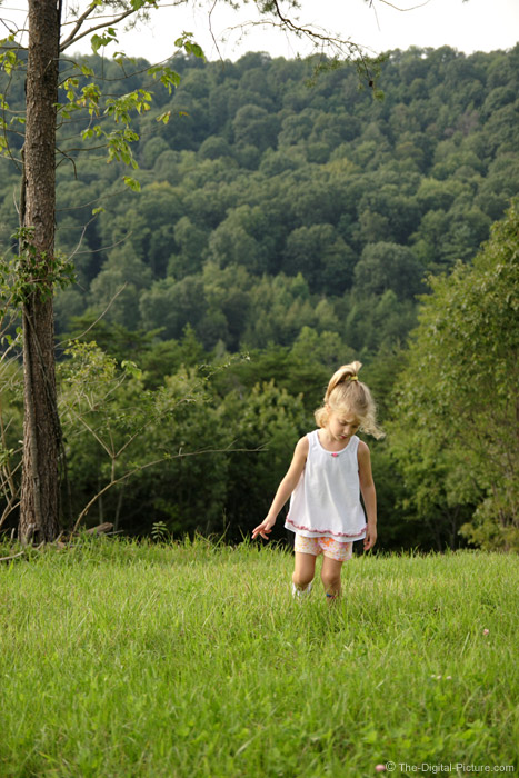 Girl Walking in Green Grass Field Picture
