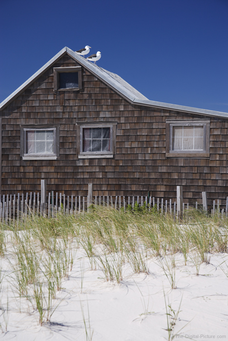 Gulls, Sand and an Old Beach House Picture