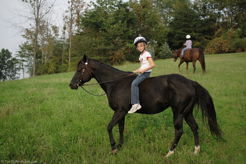 The Girls Riding Bareback Picture